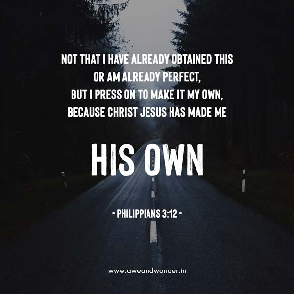 Not that I have already obtained all this, or have already arrived at my goal, but I press on to take hold of that for which Christ Jesus took hold of me. - Philippians 3:12