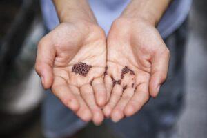 faith as small as a mustard seed